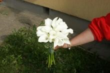 Buchete de mireasa Floare de Lotus Suceava (5)